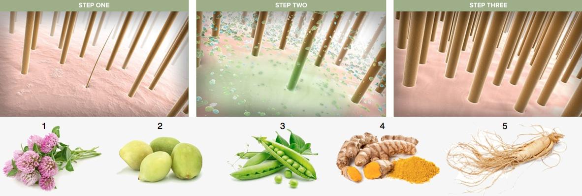 Tea Tree Scalp Care - For et tykkere og fyldigere hår
